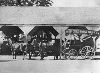 1851 Haas Brothers Wholesale Groceries Established
